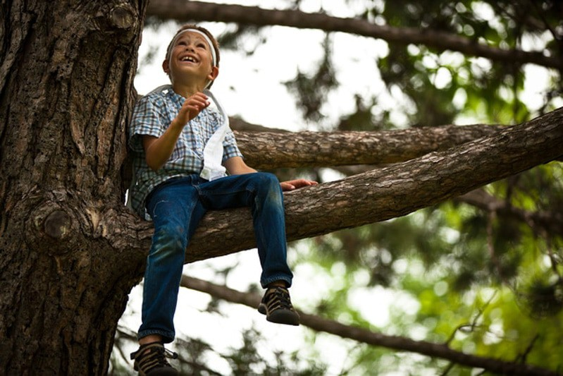 tree-boy-AIC